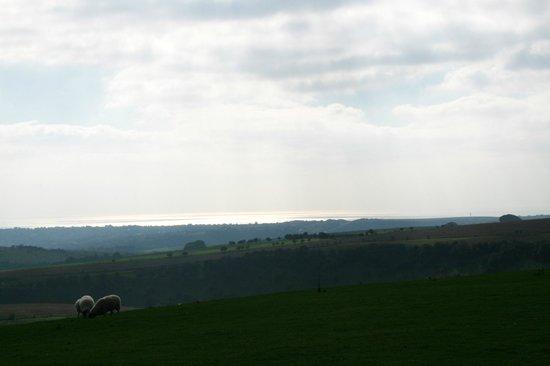 South Downs Way: Towards Brighton