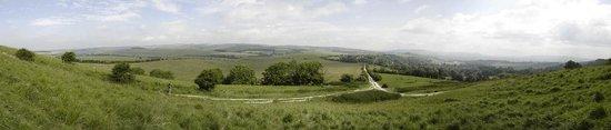 South Downs Way: Kingston Ridge