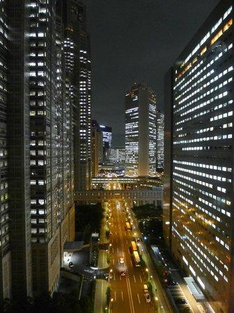 Shinjuku Washington Hotel Main: Metro Government building on the left.