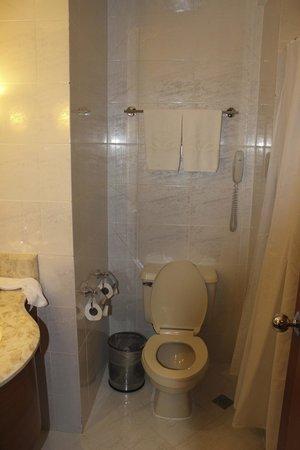 City Garden Hotel Makati : toilet