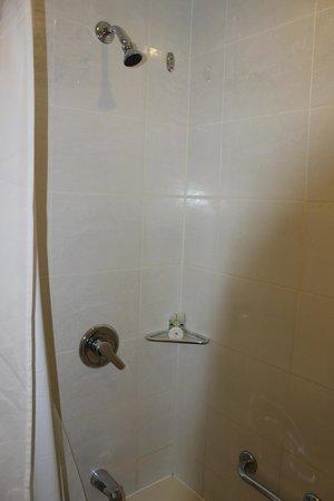 City Garden Hotel Makati : bath tub