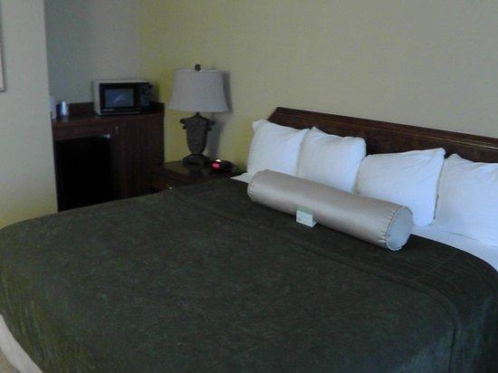 BEST WESTERN Salbasgeon Inn & Suites of Reedsport: Bett & Mikrowelle