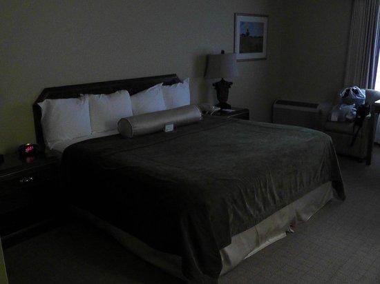 BEST WESTERN Salbasgeon Inn & Suites of Reedsport: Bett