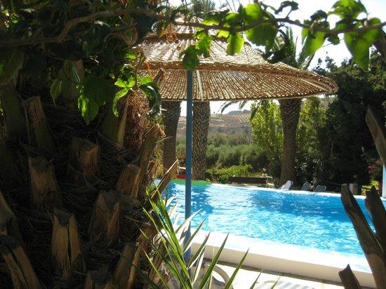 Oasis Hotel: zwembad