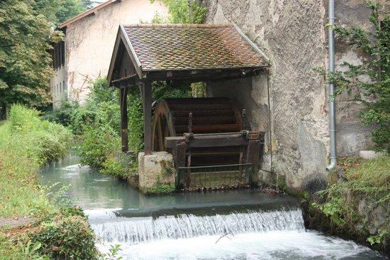 Parc du Chateau de Vizille : Vizille - Molino en los jardines del ''Château de Vizille''