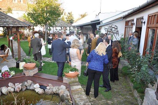Gostiona-Vendeglo Gurinovic: back garden