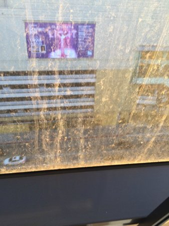 Sofitel Los Angeles at Beverly Hills: Dirty windows