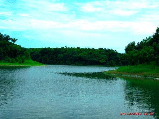 Paraiso D'Angelo: lago do Miriti