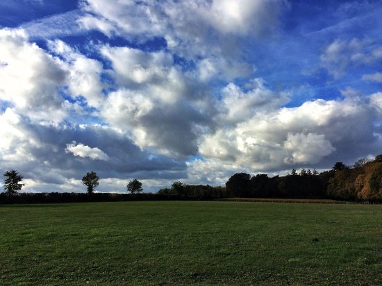 Le Château de Fontenay: A view from the castle park...