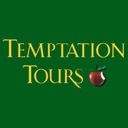 Reviews Temptation Tours Hawaii