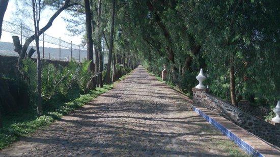 Hostal Spa Rancho La Pitaya: El camino entre el hotel, el SPA y las caballerizas