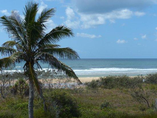 Fraser Island Beach Houses Reviews