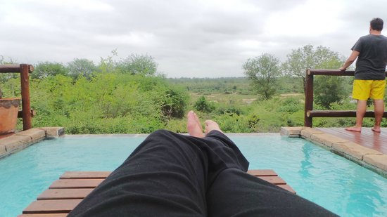Bushwise Safaris : relaxing by pool at Bushwise