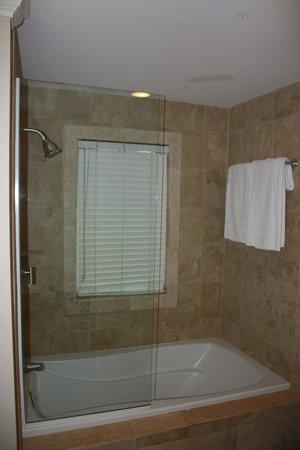 Villa Renaissance : Shower/ub combo