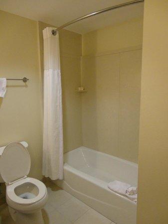 Ramada Plaza Resort and Suites Orlando International Drive : banheiro 2