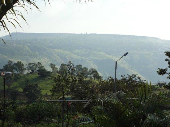 Hira Baug: Full of Nature !!!