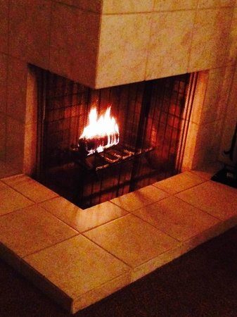 Silverado Resort and Spa: Fireplace with a duraflame log was a nice touch.