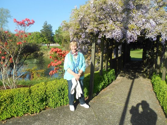 Government Gardens: lovely october weather