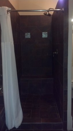 Lamothe House Hotel: mosiac tile shower (with lots of room)