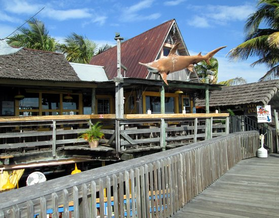 Sculley's Boardwalk Grille: The flying shark won't eat the food