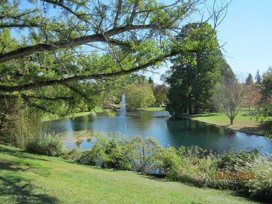 Spring Grove Cemetery & Arboretum: Spring Grove view