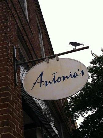 Antonia's 사진