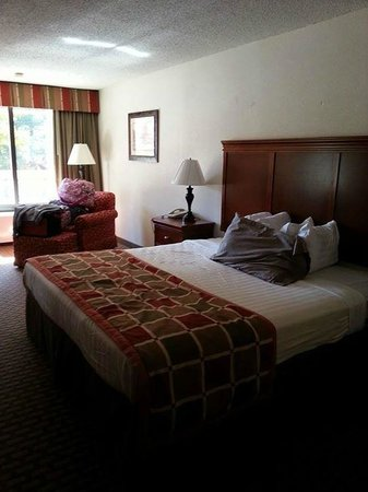 Great Smokies Inn: Bedroom