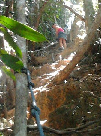 Mount Santubong: Me scrambling up