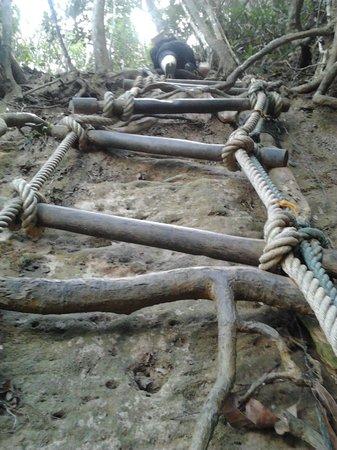 Mount Santubong: Vertical rope ladders x 6+