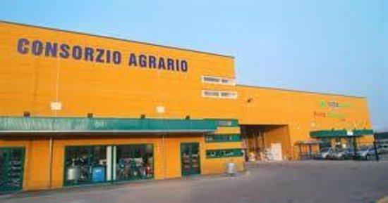 Consorzio Agrario Adriatico-Forli