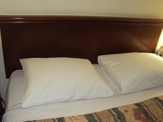 Hotel Venetur Alba Caracas: almohadas muy comodas