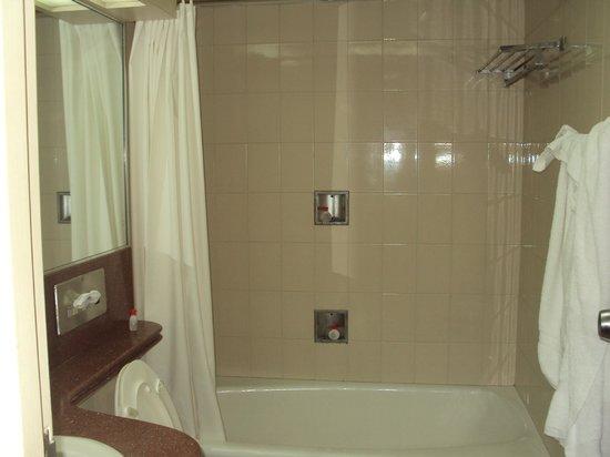Hotel Venetur Alba Caracas : baño muy limpio