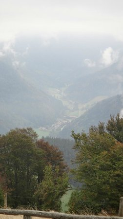 Schauinslandbahn: View from one of the trails on top.
