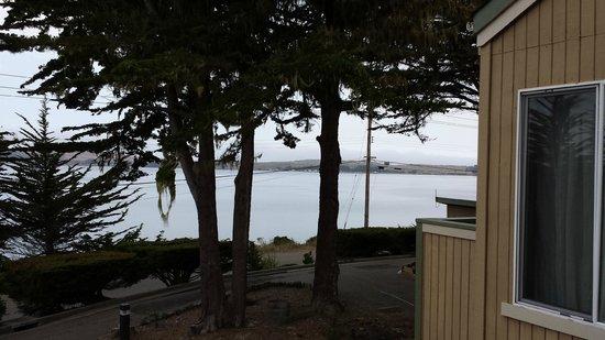 Bodega Coast Inn & Suites : Idyllische Aussicht