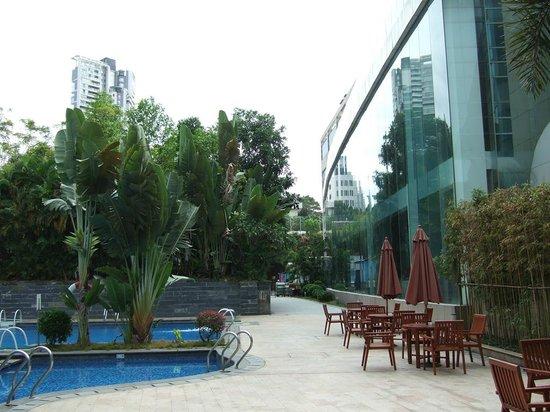 Novotel Shenzhen Bauhinia: Pool in the garden