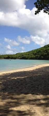 Rosewood Little Dix Bay: just beautiful