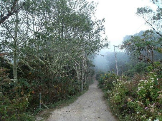 Volcan Baru National Park: Somewhere on the trail.