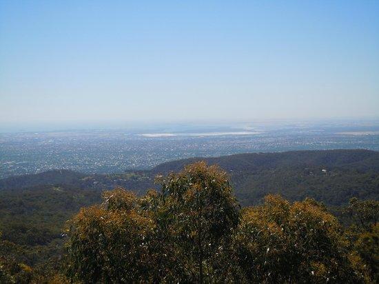 Mount Lofty Summit: Looking up the coast