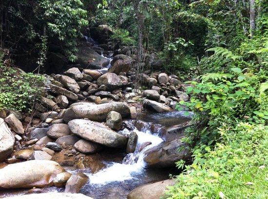 Mari Mari Cultural Village: A stream passing through the village