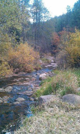 Kohl's Ranch Lodge : Tonto Creek right on the grounds is beautiful and fun.