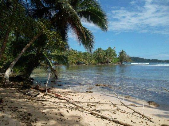 Gran Kahuna Beach Hostel: More beach.