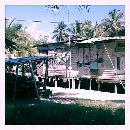 Gran Kahuna Beach Hostel: A house on the island.