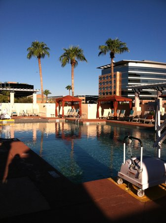 Tempe Mission Palms Hotel and Conference Center : pool