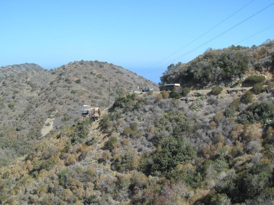 Catalina Zip Line Eco Tour: View of the surrounding hills.