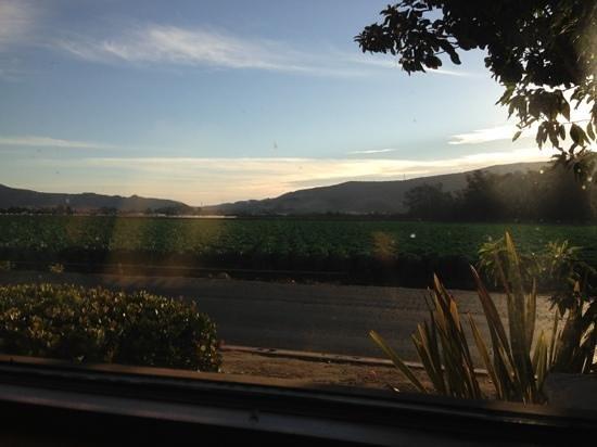 Tahoe Joe's: out our window at Tahoe Joes