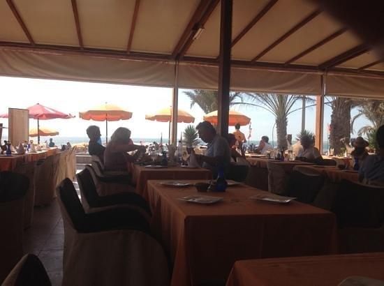 Restaurant Camel's : dal ristorante camel