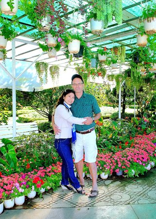 Dalat Flower Park : Touched up tourist photo of potted plants