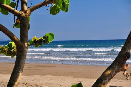 Las Lajas Beach Resort: beach