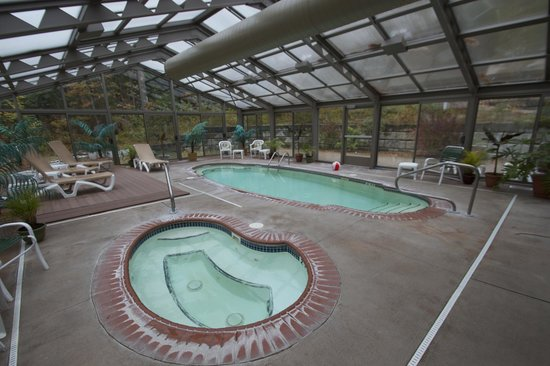 Christmas Farm Inn & Spa: Indoor pool area