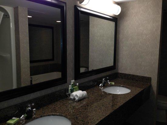 Executive Royal Hotel Edmonton: Double Sink